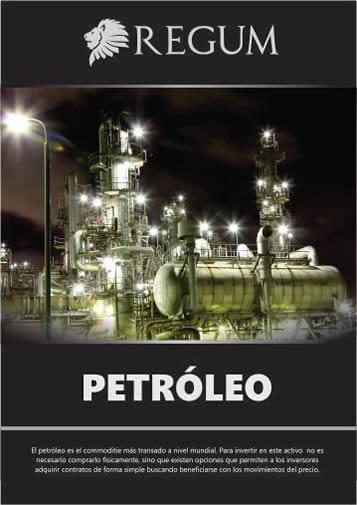 Reporte Petroleo Junio 2017