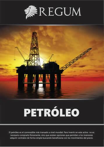Reporte Petroleo Marzo 2017