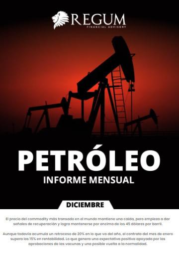 Petróleo informe mensual diciembre