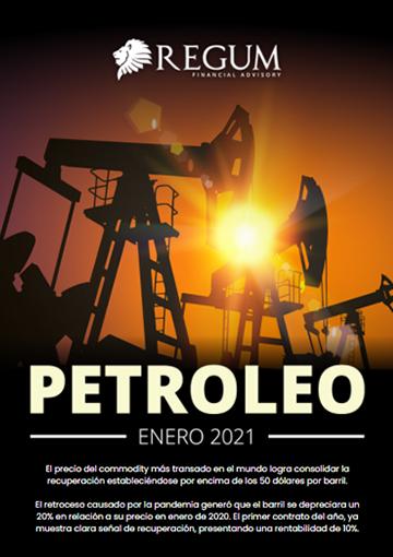 Petróleo informe mensual enero