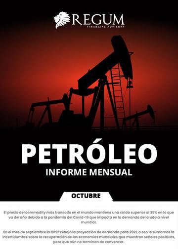 Petróleo informe mensual octubre